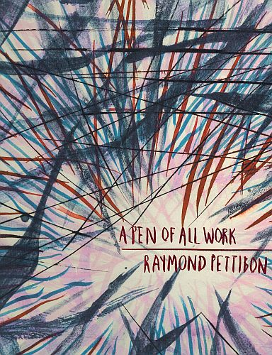 Image for Raymond Pettibon: A Pen of All Work