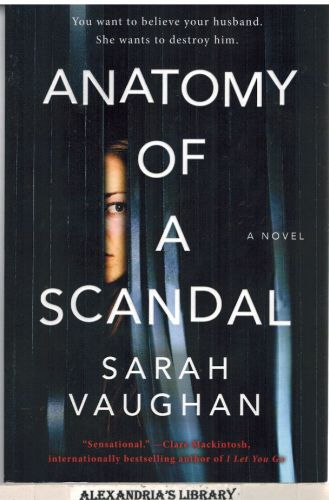 Image for Anatomy of a Scandal