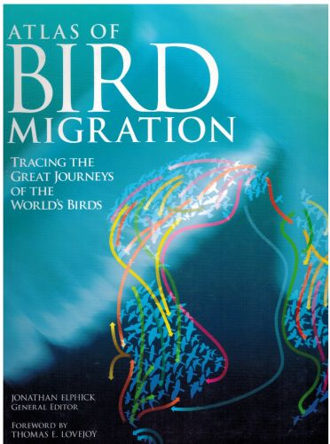 Image for Atlas of Bird Migration: Tracing the Great Journeys of the World's Birds