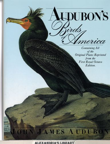 Image for Audubon's Birds of America: The Royal Octavo Edition