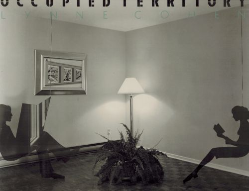 Image for Occupied Territory
