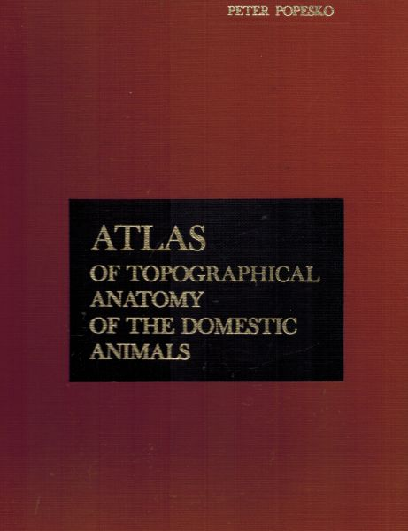 Image for Atlas of Topographical Anatomy of Domestic Animals - Vol.1,2,3 (In Single Volume)